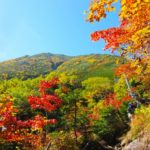 蒜山高原での紅葉狩りからの湯原温泉での美肌の湯