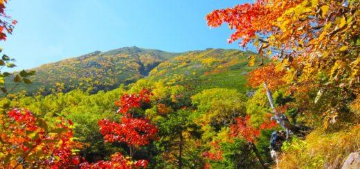 蒜山高原は紅葉の名所