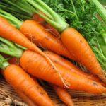 好きな野菜はにんじん!ですけど何か?美味しい野菜は生で十分ですよね