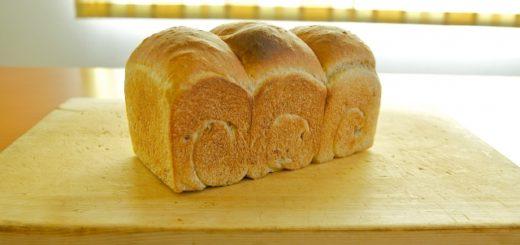 のがみの食パン